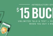 Mint Mobile Buyer's Guide
