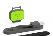 Whistle FIT wearable for dogs monitors your best friend
