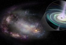 Astronomers search tiny galaxies to understand the evolution of black holes