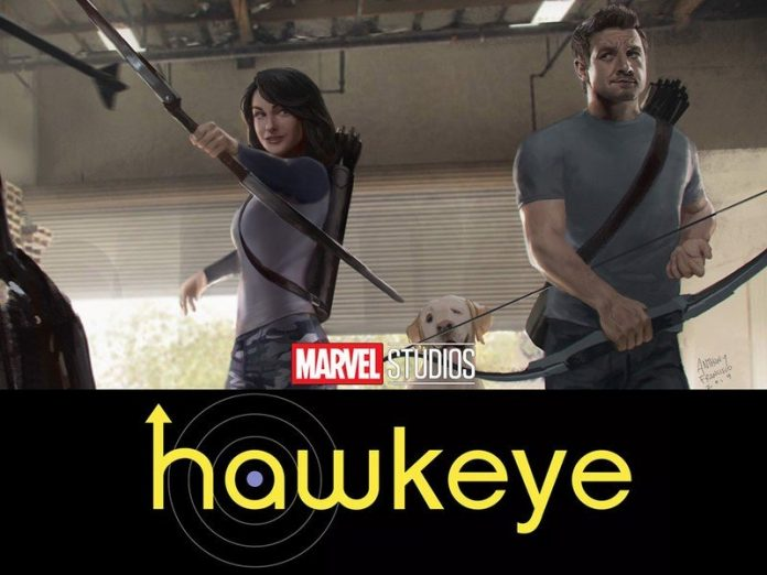 Hawkeye on Disney Plus misses the mark, still aiming for a future release