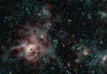 Spitzer's last hurrah is a beautiful image of the spooky Tarantula Nebula