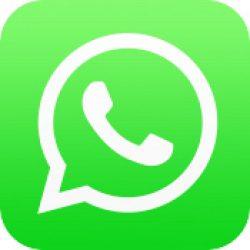 WhatsApp and Amazon Alexa Launch Coronavirus Information Services