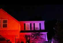 Novostella offers smart lighting for budget buyers
