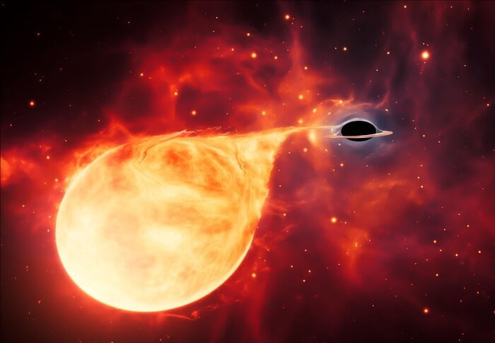 Hubble may have found the 'missing link' in black hole formation