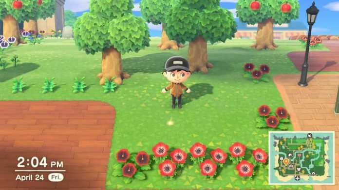How to plant a money tree in Animal Crossing: New Horizons