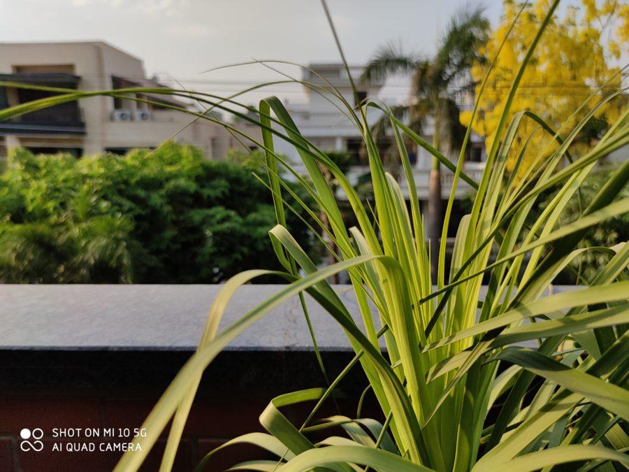 Xiaomi Mi 10 Camera Sample 04