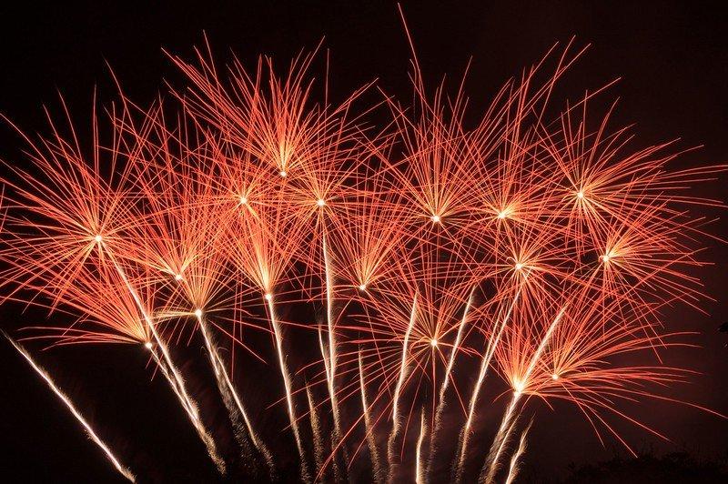 Exploding_Flower_Bed_fireworks.jpg