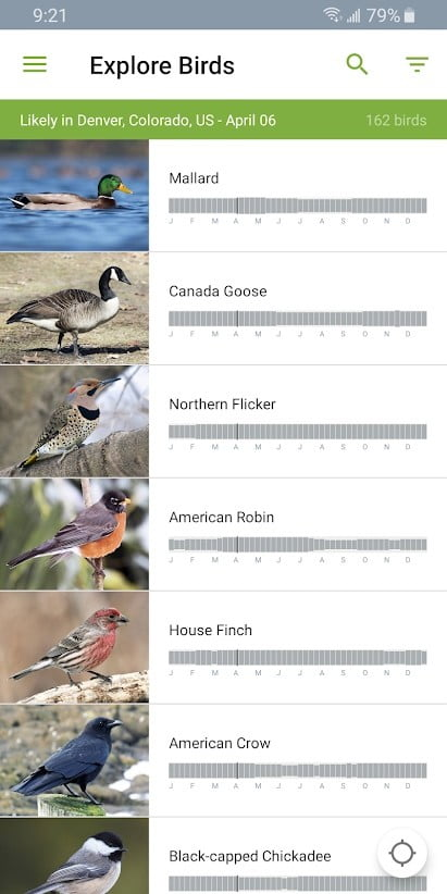 Best bird identification apps for iOS and Android