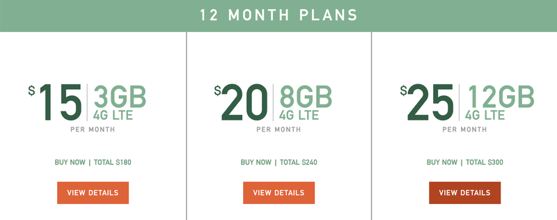 mint-mobile-12-month-plans.png?itok=CiBf
