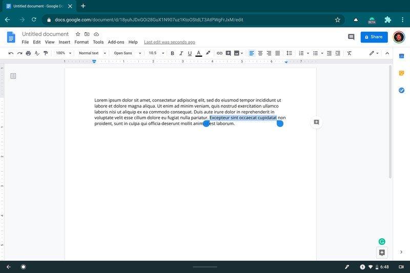 highlight-text-chromebook.jpg