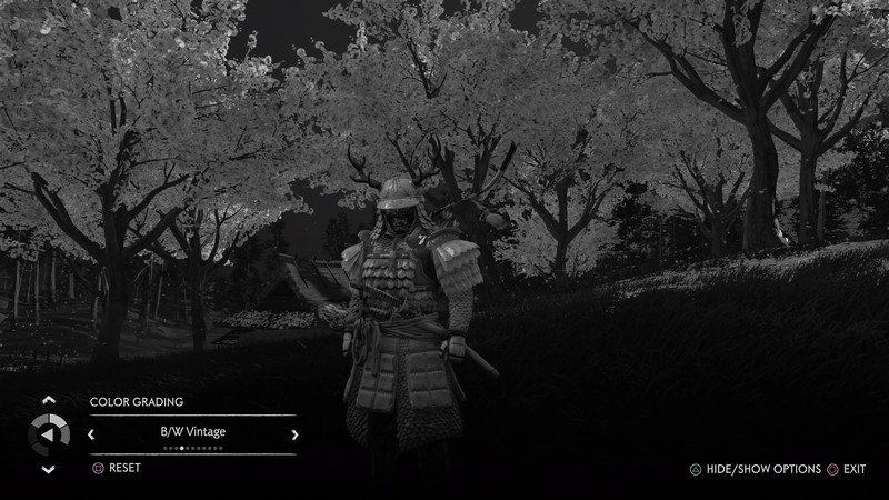 ghost-of-tsushima-photo-mode-filter-bw-v