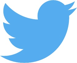 Twitter Planning to Test Subscription Models This Year