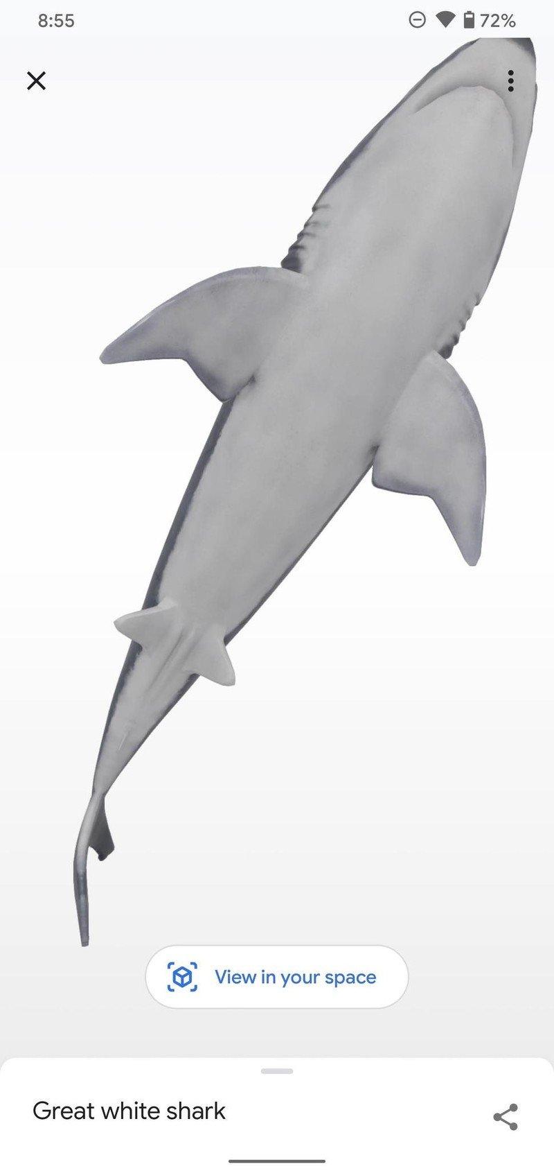 google-3d-animal-how-to-11.jpg