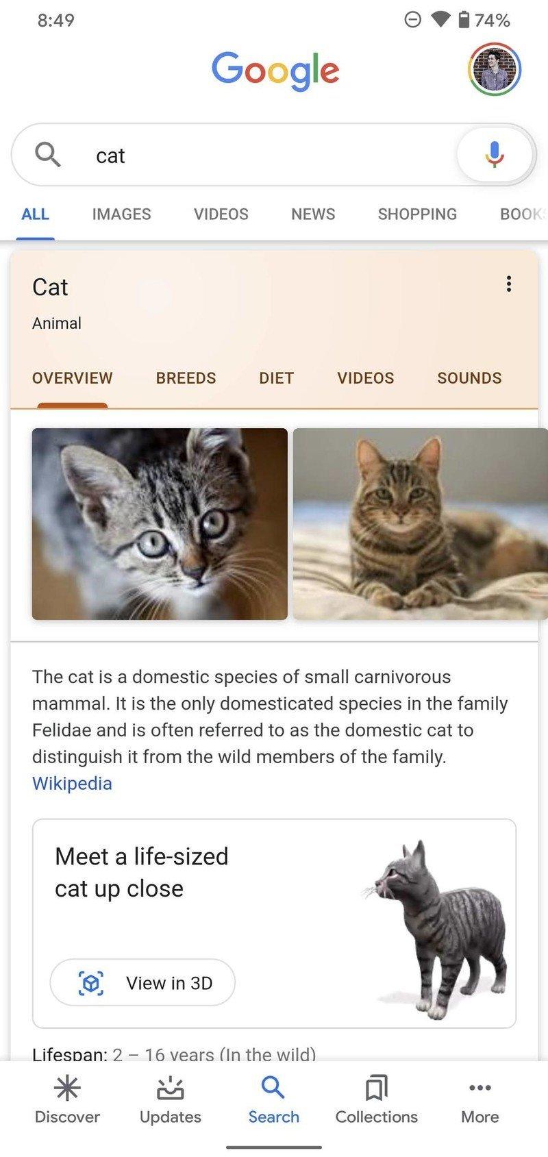 google-3d-animal-how-to-2.jpg