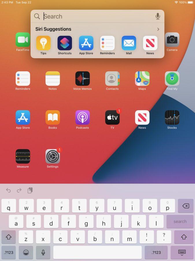 Apple iPad 2020 iPadOS 14 search bar