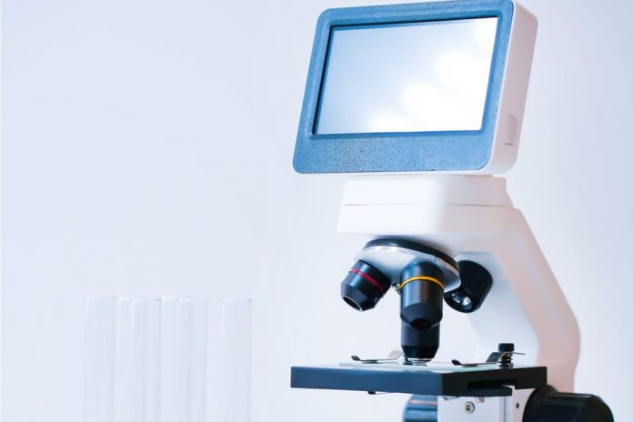 The best LCD microscopes to bring your magnification capacity to a new level