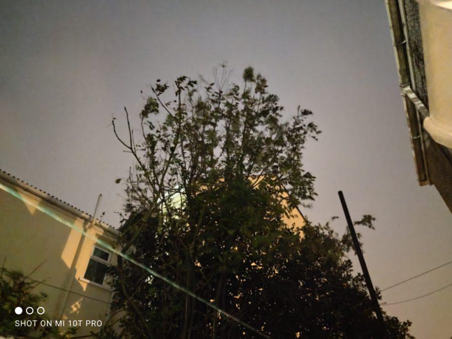 Xiaomi Mi 10T Pro night time camera sample of a tree