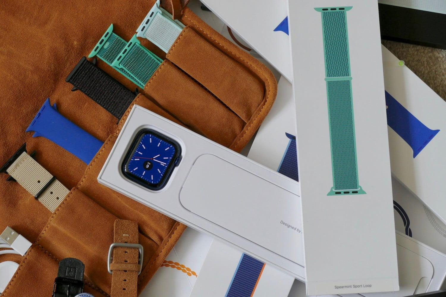 Hey Apple, please sell me an Apple Watch without a strap