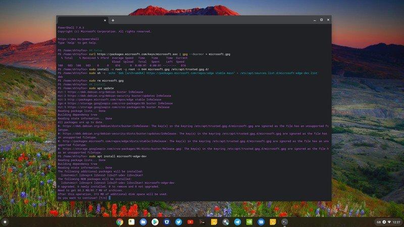 edge-chromebook-terminal-install.jpg
