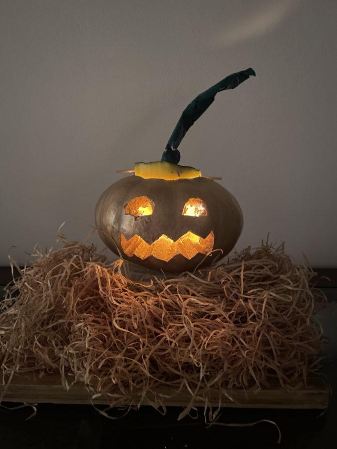 iPhone 12 pumpkin shot
