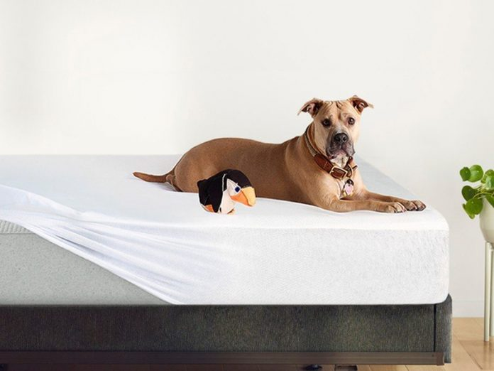 Best Black Friday mattress sales: Get up to $400 in extras for FREE