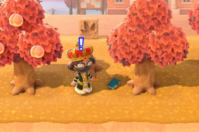 Animal Crossing: New Horizons lost item guide