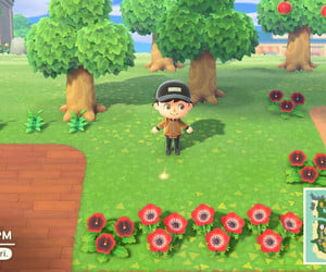 How to make money in Animal Crossing: New Horizons