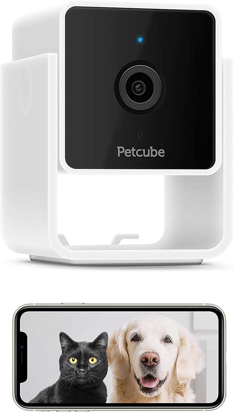 petcube-cam-render-cropped.jpg