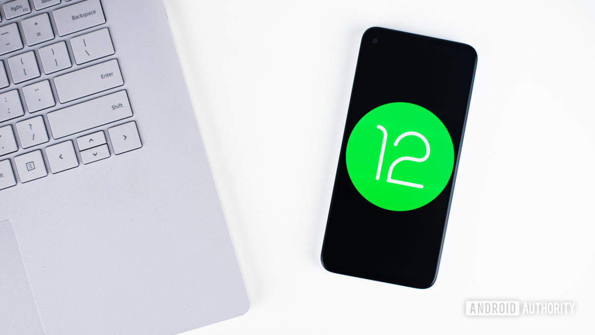 Android 12 stock photo 6