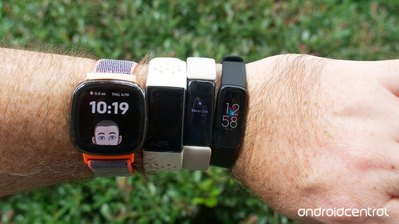 bunch-o-fitbits.jpg
