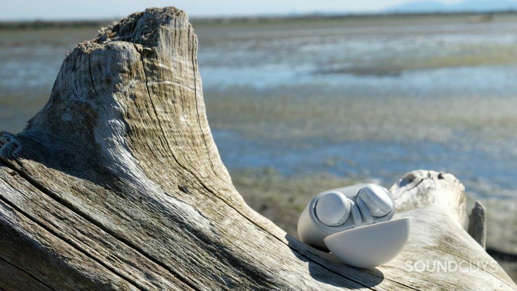 The Google Pixel Buds A-Series are sitting in their case on a piece of driftwood at a beach.