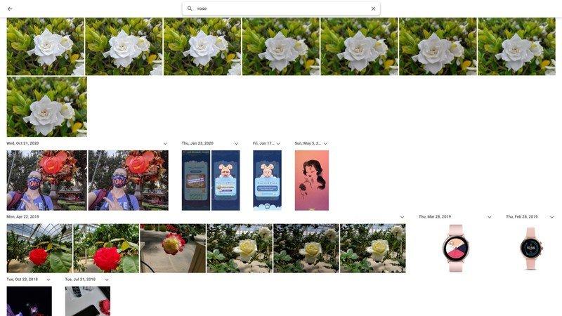 google-photos-search-rose.jpg