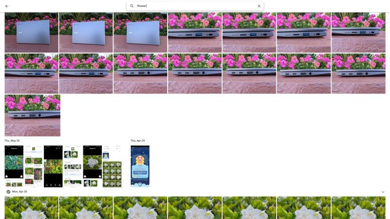 google-photos-search-flower.jpg