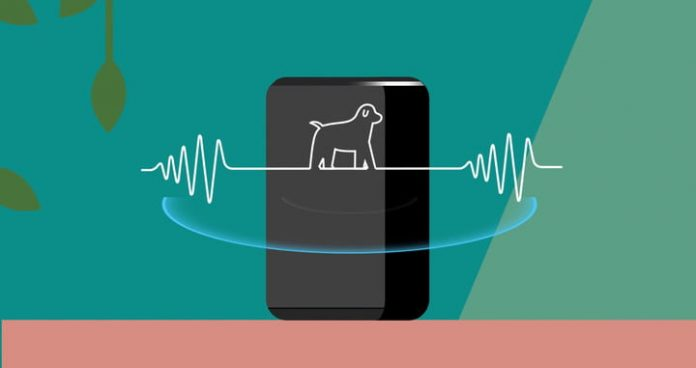 How to make your Amazon Echo bark like a dog to scare off intruders