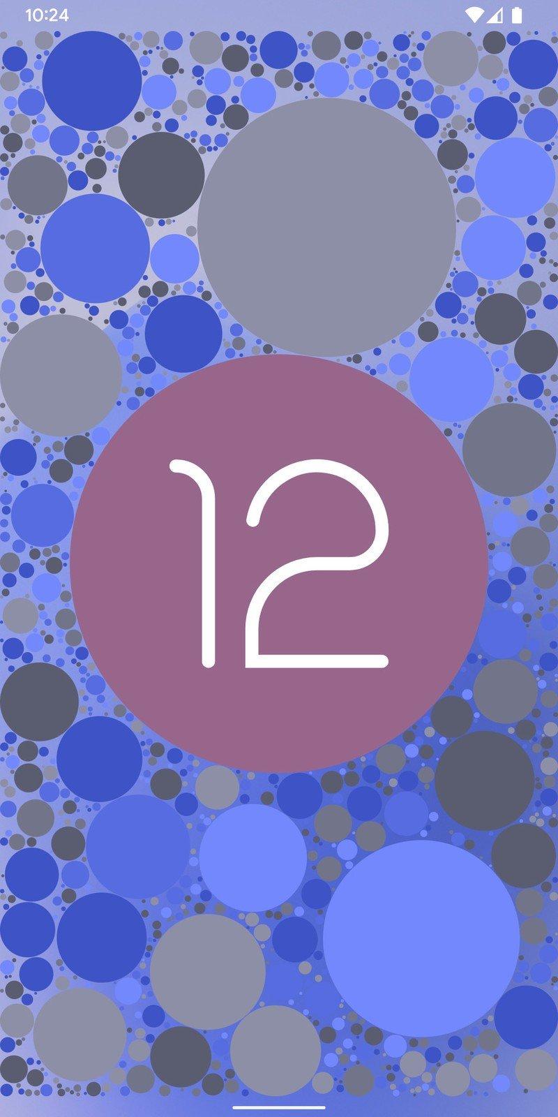 android-12-easter-egg-ss05.jpg