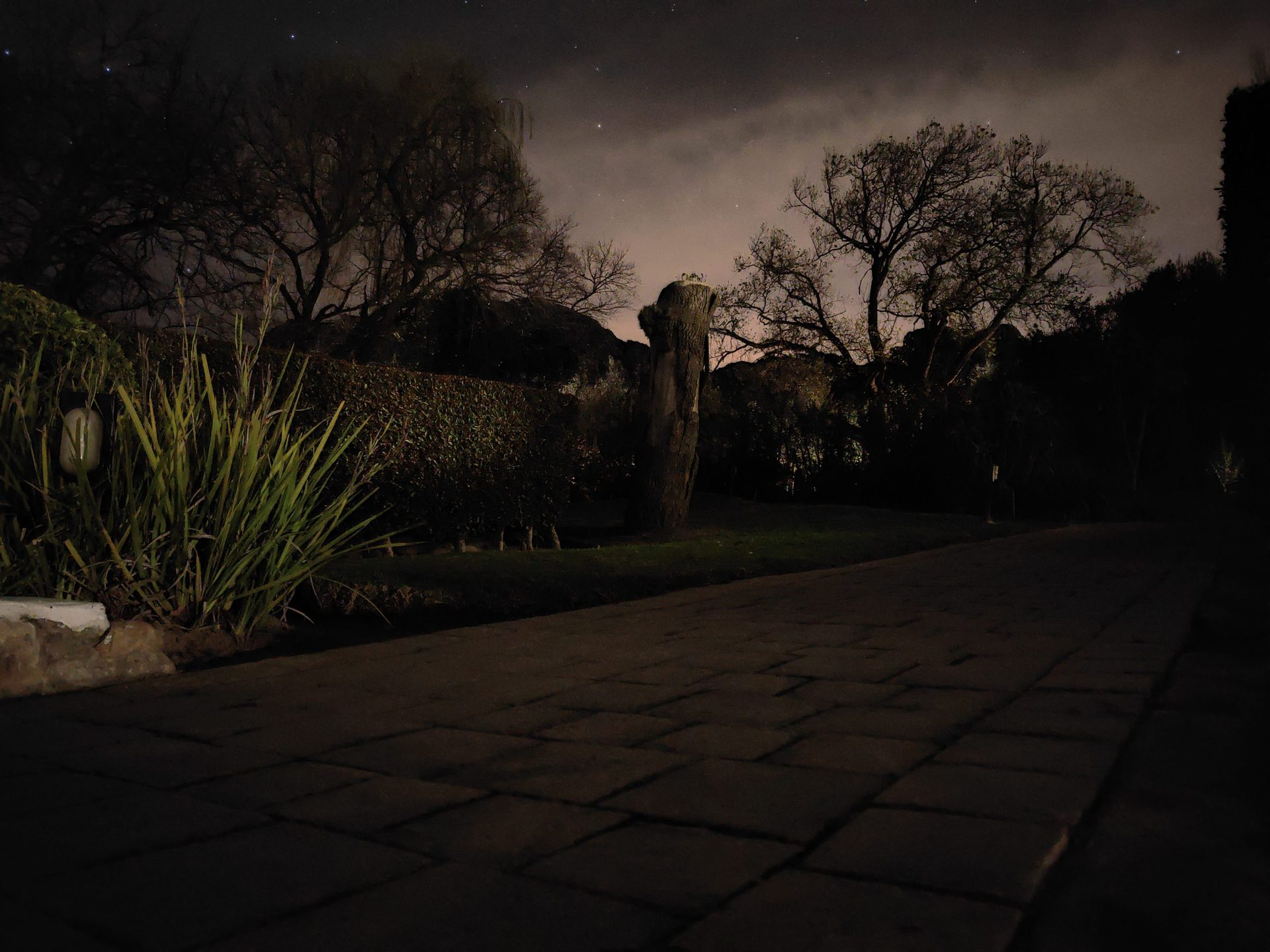 A tripod-mounted shot from the 1x camera in extreme low light.